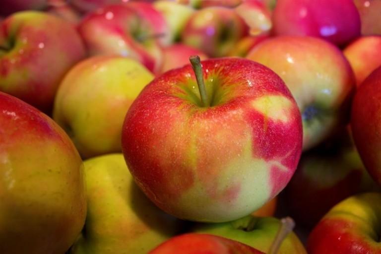 apples Dental Care Center